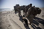 CLB-15 trains for foreign humanitarian assistance missions 150412-M-JT438-187.jpg