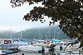 CL Claytor Lake Ness Monster (17073253686).jpg