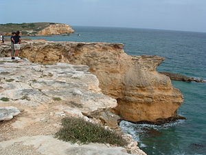 Cabo Rojo, Puerto Rico - Limestone cliffs near the Los Morrillos Lighthouse.