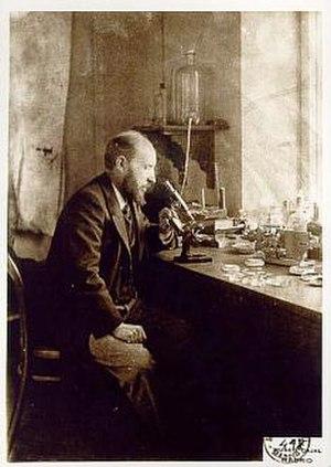 Santiago Ramón y Cajal - Ramón y Cajal in his laboratory.