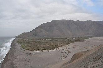 Caleta Camarones - The beach and the wetlands of Caleta Camarones