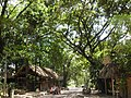 Calle de Palenque - panoramio.jpg