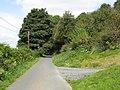 Camp Lane Near Walsgrove Hill - geograph.org.uk - 1482797.jpg