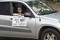 Car protest against police violence - Justice for George Floyd (49942129727).jpg