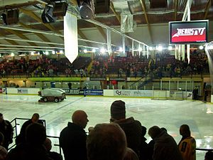 Cardiff Arena - Interior prior to an ice hockey game