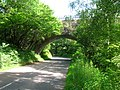 Carronhill railway viaduct.JPG