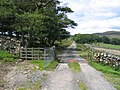 Cattle grid and lane to Kirkby Fell - geograph.org.uk - 718414.jpg