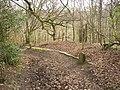 Causey (causeway) stones, Rookes Lane, Hipperholme - geograph.org.uk - 390931.jpg