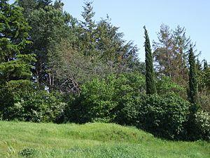 Albano Laziale - Landscape of the hilly countryside around Cecchina.