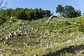 Cemetery Kremenetz 03.jpg