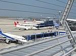 Central Japan International Airport - panoramio.jpg