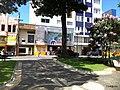 Centro, Franca - São Paulo, Brasil - panoramio (254).jpg