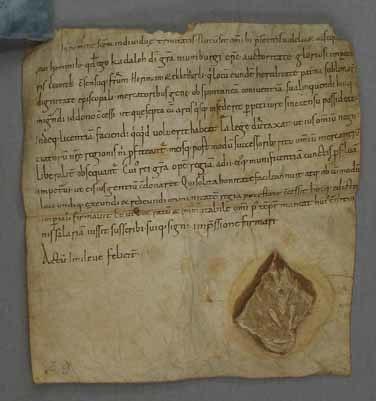 Certificate Naumburg
