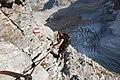Cestou na vrchol Zugspitze - panoramio (6).jpg