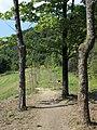 Chřiby, okolí hradu Buchlova (6).JPG