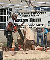 Chainsaw carving 3 - NYSFair.jpg