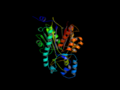 Chalcone Synthase X Ray Image.png