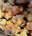 Chalcopyrite-Copper-pas-60c.jpg