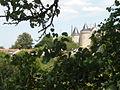 Chateausaintaulaye.JPG