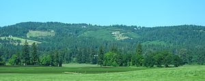 Chehalem Mountains - Image: Chehalem Mountains north of French Prairie