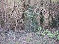 Cholsey Milestone - geograph.org.uk - 721390.jpg