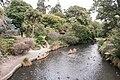 Christchurch Botanic Gardens, Avon river 2016-02-04.jpg