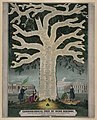 Chronological tree of Irish history from the first invasion of the English to the present day - lith. of F. Heppenheimer & Co., 22 & 24 North William St., New York. LCCN2005677217.jpg