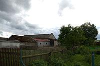 Ciconia ciconia nest Glowczewice.jpg