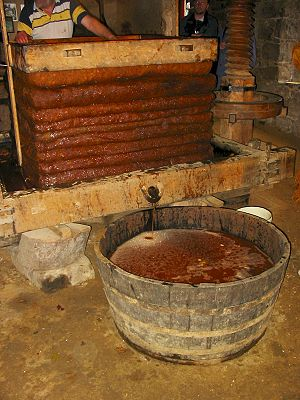 Cider mill - A large cider press at a cider mill in Jersey, used for squeezing the juice from crushed apples
