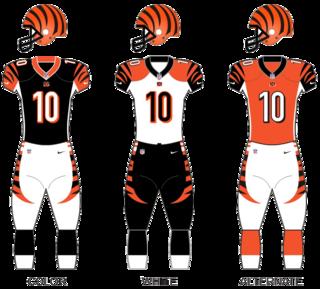 Cincinnati Bengals National Football League franchise in Cincinnati, Ohio