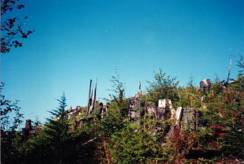 "Clearcut Formerly Known as Forest. The ""B..."