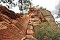 Climbing up to Angels Landing (Zion National Park) (3443198581).jpg