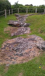 From the top to the bottom of the image, a range of large, grey and mottled stones are situated at a low level, surrounded and partially covered by soil and green grass. In the background is a dark green hedge.
