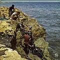Collectie Nationaal Museum van Wereldculturen TM-20029837 Snorkelen bij de kust van Hato Curacao Boy Lawson (Fotograaf).jpg