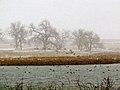 Colorado 2013 (8569913863).jpg