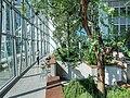 Commerzbank Hochhaus Garten.jpg