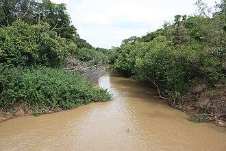 Komoé River - The Comoé River near Folonzo