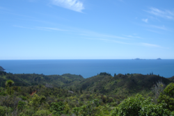 View over Mercury Bay from the Tairua-Whitianga Road on the Coromandel Peninsula.