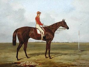 Cossack (horse) - Cossack with Sim Templeman. Painting by Harry Hall.