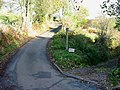 Country Lane - geograph.org.uk - 129366.jpg