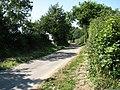 Country Lane - geograph.org.uk - 522019.jpg