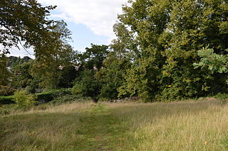 Cut-throat Meadow nature reserve in the United Kingdom