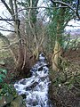 Cwm-gu Brook - geograph.org.uk - 291944.jpg