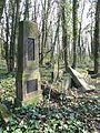 Czestochowa cmentarz zydowski 09.jpg