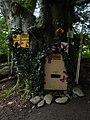 DSCN6213 Helensburgh Duchess Wood Fairies Meeting Place.jpg
