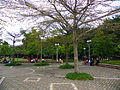 Daan Park East Entrance Plaza.jpg