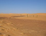 Traces of the Dakar Rally in Mauritania
