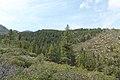 Davis Creek Park - panoramio (50).jpg