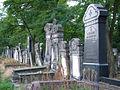 Day 1- The jewish cemetery of Lodz (45073757).jpg
