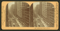 Dearborn Street, Chicago, Ill., U.S.A, from Robert N. Dennis collection of stereoscopic views.png